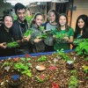 Community outreach project. Students taught community members to build their own aquaponics systems.
