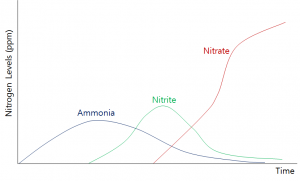 Notice the different peaks of ammonia and nitrite.