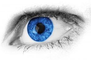 Eye color is determined by DNA, made from proteins built up with nitrogen.
