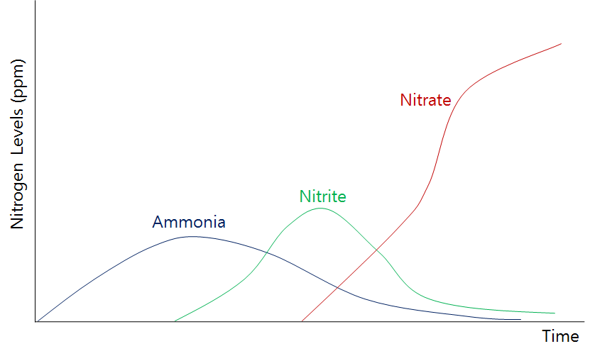 nitrite an important ion project feed 1010