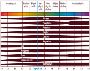 nutrient-availability-with-ph